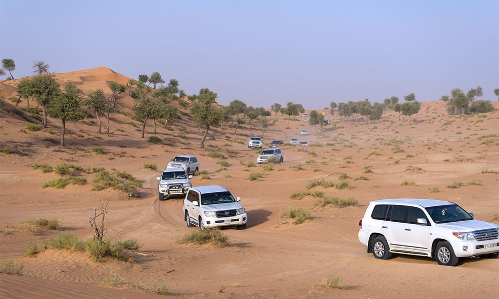 Travel In Style: Sharaf Tours